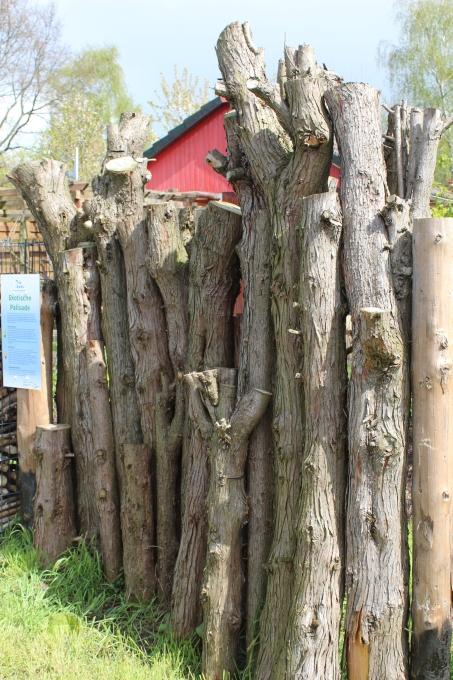 Prächtig Lebensraum Gartenzaun - NABU Bremen @FN_15